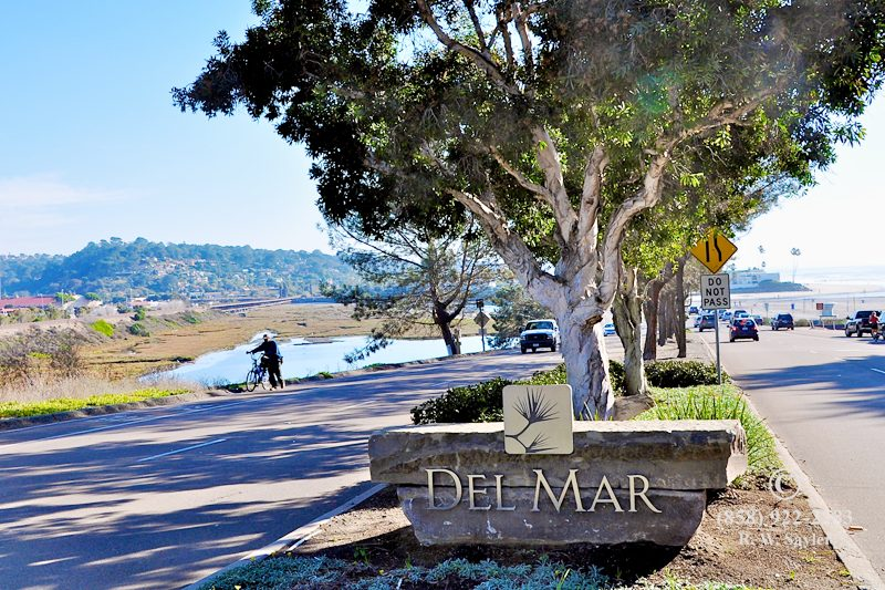 Del Mar movers, del mar moving company