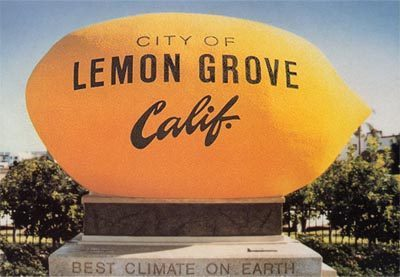 lemon grove movers, lemon grove moving company