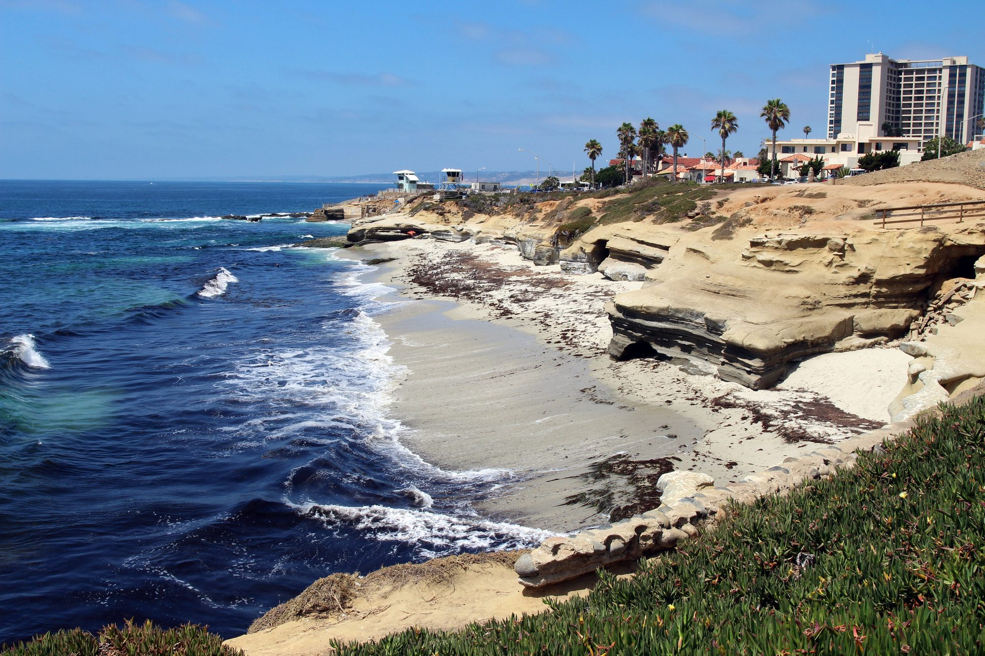 fun things to do in la jolla at the beach